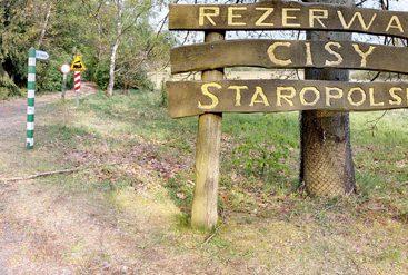 wirtualny spacer rezerwat przyrody